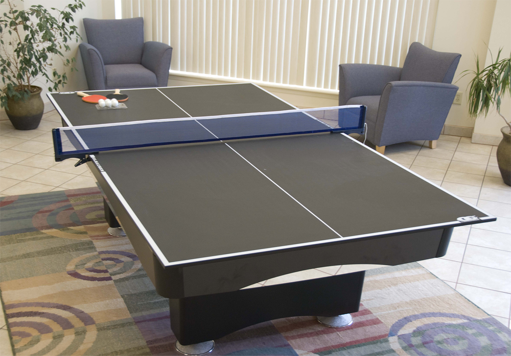 Add More Fun To Your Game Room. Outdoor Ping Pong Tables